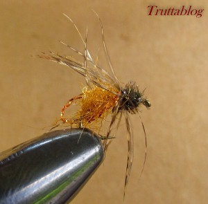 Caddis (3 of 6)