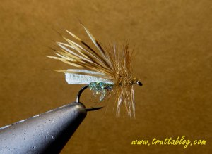 Puterbaugh Caddis
