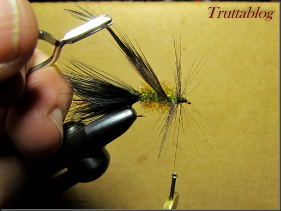 Woolly Bugger (10 of 28)