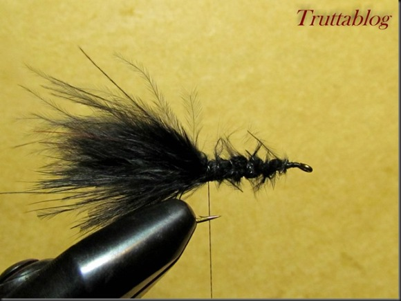 Woolly Bugger (18 of 28)