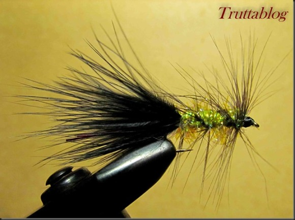 Woolly Bugger (2 of 3)
