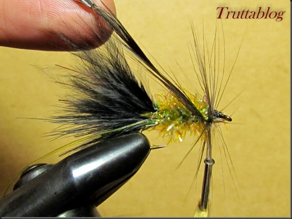 Woolly Bugger (23 of 28)