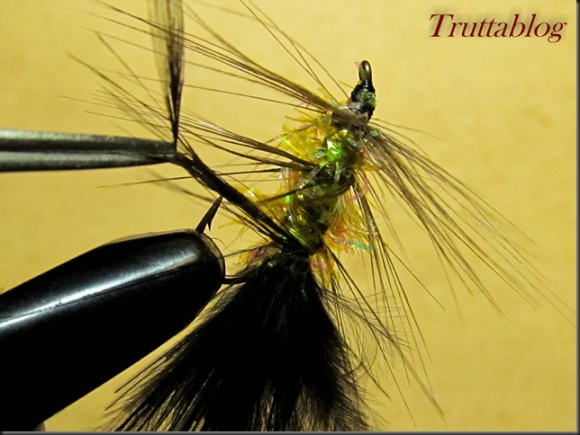 Woolly Bugger (26 of 28)