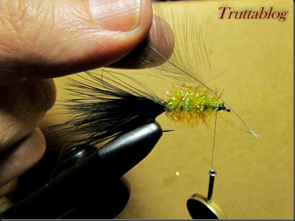 Woolly Bugger (9 of 28)