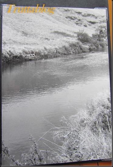 Silverdale Mooi River (4 of 6)