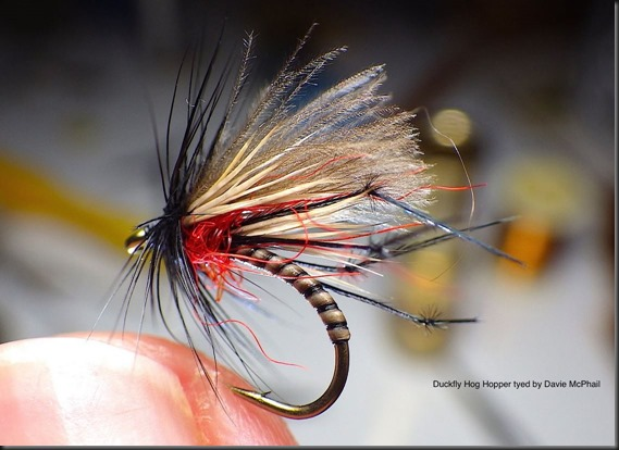 Duckfly Hog Hopper