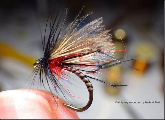 Duckfly Hog Hopper