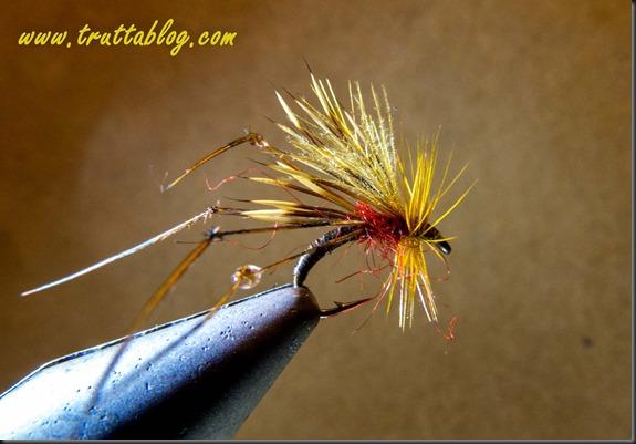 hog hopper (1 of 1)-2