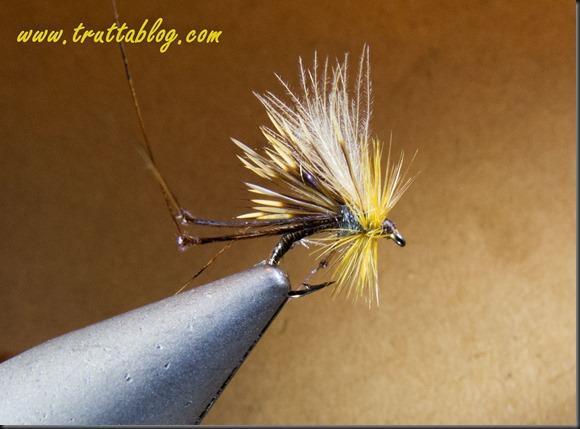 Hog Hopper (2 of 2)