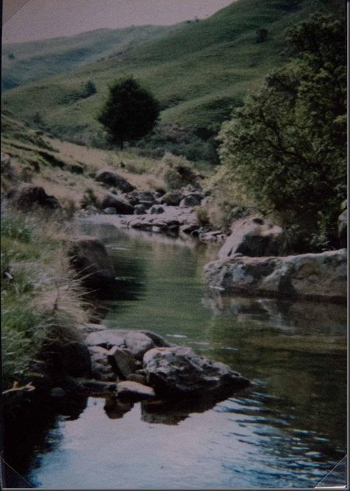 1984 (5 of 6)