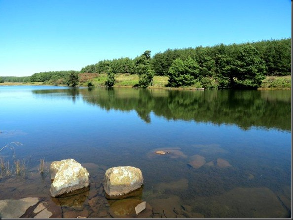 Mondi, Gilboa Estates - Balbarton Dam - Mar.13