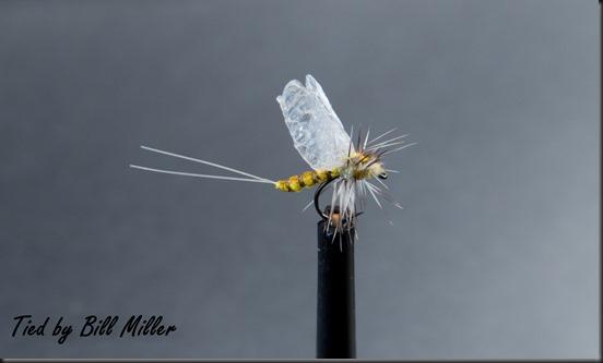 Bill Miller (7 of 8)