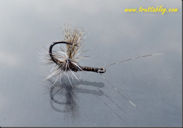 Reverse dry flies (1 of 1)