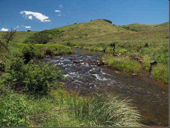 Umgeni River-23