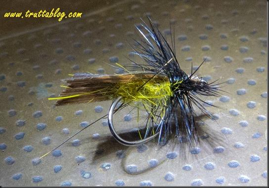 Adult caddisflies SM-1-2