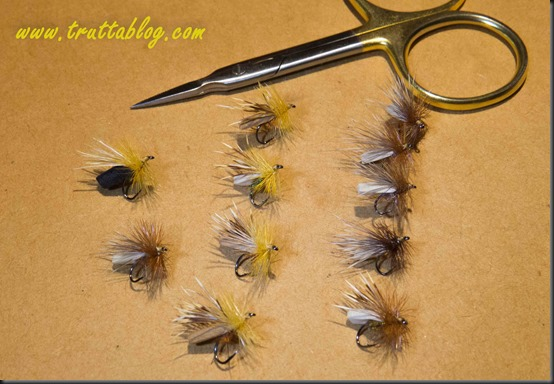 Puterbaugh Caddis (1 of 1)