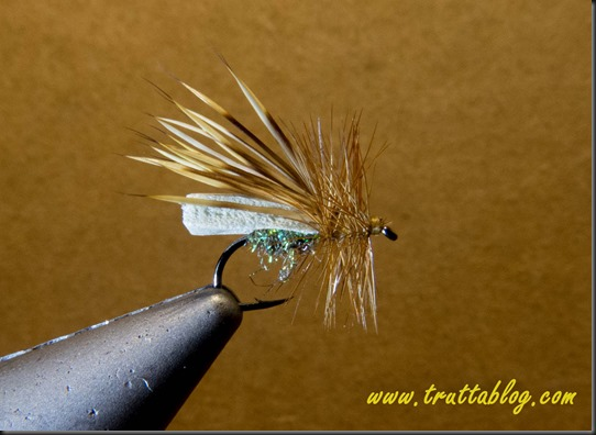 Puterbaugh Caddis (3 of 7)