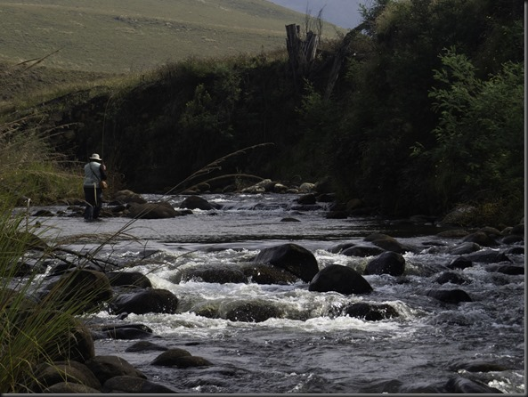 Upper Umgeni River-16