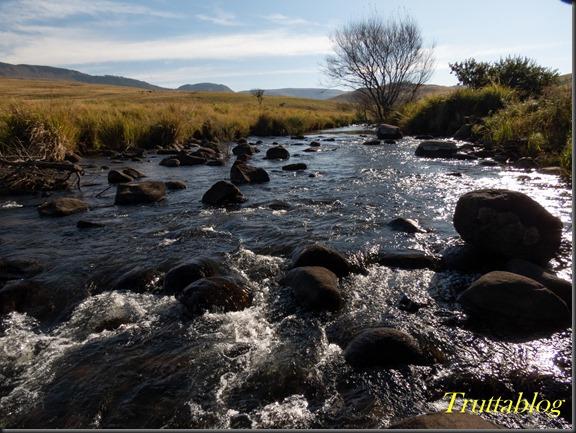 uMngeni River (6 of 8)